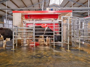 Click to enlarge image Lely__Lely-A5-Locatie---Lely---Houwerzijl--CF062097---534--09-.jpg