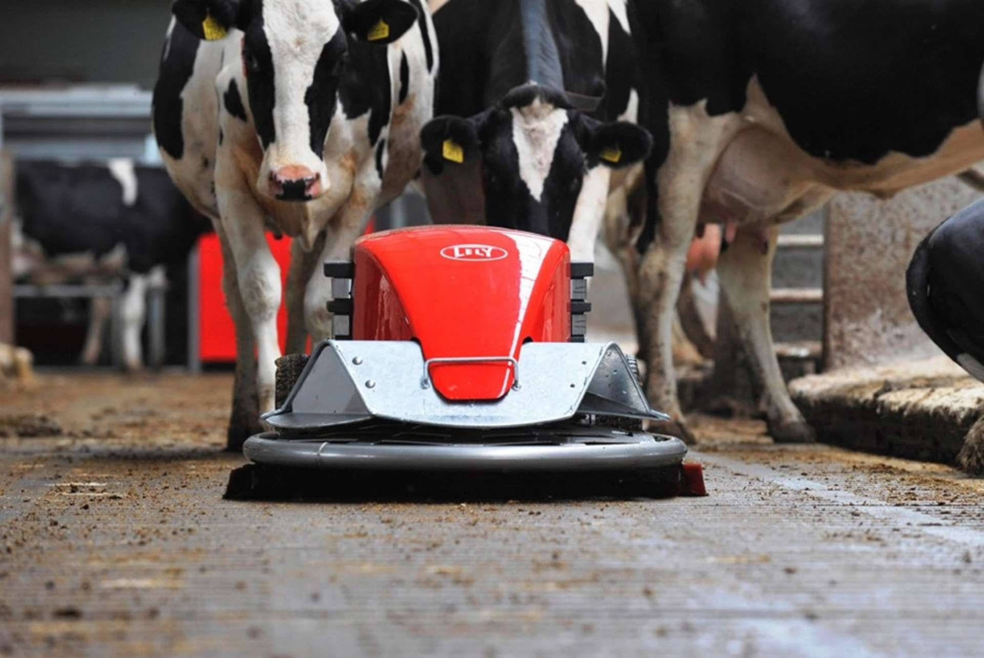 Lely Discovery skraperobot