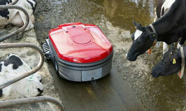 Lely Discovery Collector